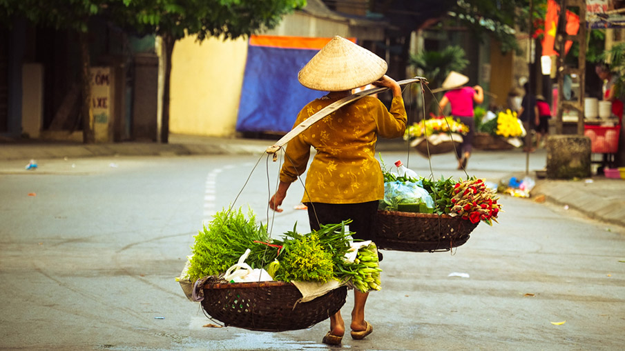 HIGHLIGHTS OF VIETNAM